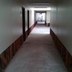 IMG00769-20130329-1132
